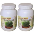 Organic Wheatgrass Powder - Pack  of 2 Bottles Free Delivery