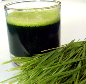 Addy Wheatgrass Juice