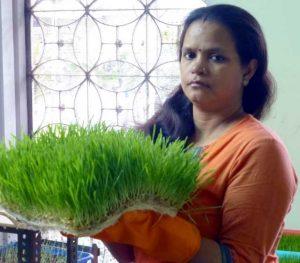 Shashi Addy Wheatgrass