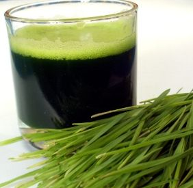 Wheatgrass Juice made with Mixer Grinder
