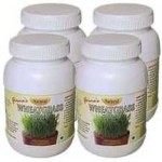 Girmes Wheatgrass Powder