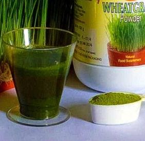 Wheatgrass Doses